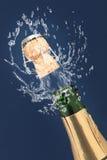 шампанское Стоковая Фотография