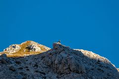Шамуа поверх горы стоковая фотография