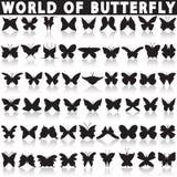 шаржа бабочки бабочек предпосылок изолированные иконы иконы конструкций красивейшего цветастые раскрывают установленные белые кры Стоковые Фото