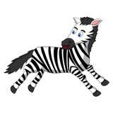 Шарж зебры Стоковые Фото