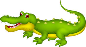 Шарж крокодила Стоковое фото RF