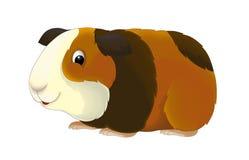 Шарж - морская свинка - иллюстрация для детей Стоковая Фотография RF