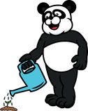 Шарж моча завода панды Стоковые Фотографии RF
