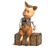 шарж одевает милую свинью Стоковые Фото