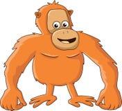 Шарж орангутана Стоковые Фото