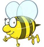 Шарж пчелы изолированный на белой предпосылке Стоковые Изображения RF