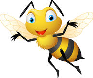 шарж пчелы смешной Стоковые Изображения RF