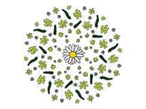 Шарж рисуя флористическую иллюстрацию дизайна мандалы цветков Стоковое Изображение RF