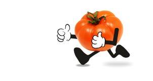 Шарж томата который бежит Стоковые Фото