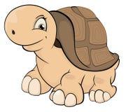 Шарж черепахи Стоковые Фото