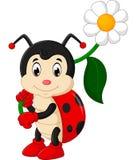 Шарж Ladybug Стоковое Изображение
