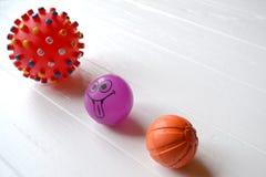 Шарики для собак Игрушки резины для любимчиков Стоковая Фотография