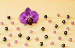 Шарики и предпосылка цветка Стоковые Изображения RF