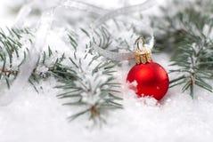 Шарики рождества красивые красные с ветвью и снегом ели на белой предпосылке Стоковые Фото