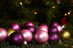 Шарики рождества на спрусе зеленого цвета Стоковая Фотография