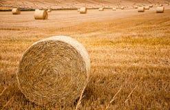 Шарики сена на поле Стоковое Фото