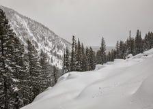 Шарики снега завальцовки в snowfield зимы Стоковая Фотография