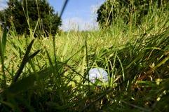 шарик грубый Стоковые Фотографии RF