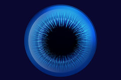 Шарик глаза Стоковые Изображения