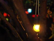 Шарик желтого света с коричневой ветвью в фестивале ночи Стоковая Фотография RF