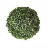 Шарик листьев Стоковые Фото