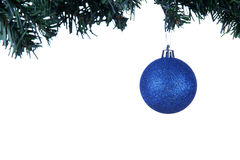 Шарик Кристмас на дереве ели Стоковая Фотография