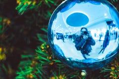 Шарик рождества на ели ветвей Стоковое фото RF