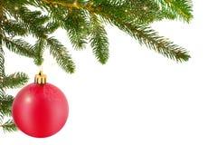 Шарик рождества с ветвью ели Стоковые Изображения RF
