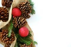 Шарик рождества, Pinecone и вечнозеленая граница изолированные на белизне стоковая фотография rf
