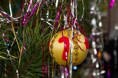 Шарик рождественской елки на ветви сосны в новой Стоковое фото RF