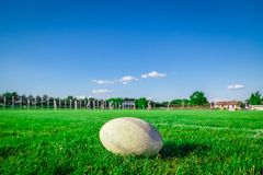 Шарик рэгби на поле и игроках на заднем плане стоковое фото