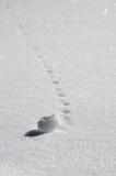 Шарик снега свернул с наклона Стоковые Изображения RF