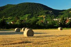 Шарик стога сена на солнечный день Стоковое Фото