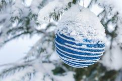 Шарик украшения рождества на ветвях покрытых снег дерева Стоковое Изображение