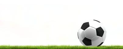 Шарик футбола футбола зеленой травы изолированный перевод 3d иллюстрация штока
