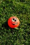шарик шальной Стоковое Изображение
