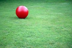 шарик Стоковые Изображения RF