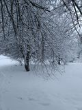 Шарм и зима стоковое фото