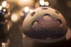 Шаровой шарнир implant протезной хирургии Traumatology тазобедренный с scre Стоковая Фотография
