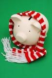 шарф банка piggy Стоковое Фото