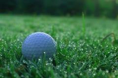 Шары для игры в гольф на зеленых лужайках в красивых полях для гольфа стоковое изображение