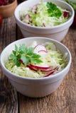 Шары салата свежего овоща с капустой и редиской стоковое изображение rf