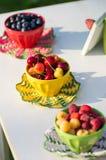Шары с ягодами Стоковое Фото