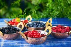 шары ягод свежие стоковая фотография