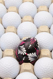 Шары для игры в гольф в коробке для яичек и украшения пасхи Стоковое фото RF