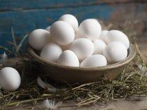 шар Больш-ply стальной вполне свежих яичек курицы Стоковое фото RF