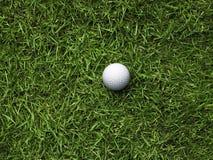 шар для игры в гольф грубый Стоковая Фотография RF