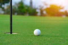 Шар для игры в гольф на губе чашки на суде гольфа стоковое фото rf