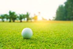 Шар для игры в гольф на зеленом цвете в красивом поле для гольфа с заходом солнца Шар для игры в гольф близкий вверх в coures гол стоковые изображения