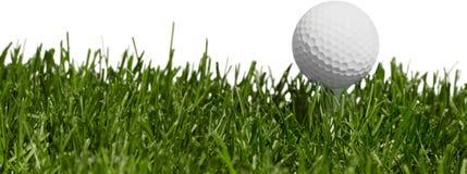 Шар для игры в гольф на траве стоковая фотография